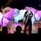 Moscow Star Circus
