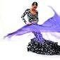 Flamenco Alegria met manton
