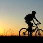 WTC De Wijngaardvrienden - VTT- & fietstochten Luc Badisco – Toyota
