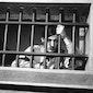 PostXFilm: UN CONDAMNÉ À MORT S'EST ÉCHAPPÉ