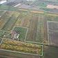 Bezoek de grootste bio-energieplantage van de Benelux