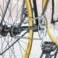 Curieus Dendermonde fietst langs trage wegen