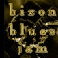 Bizon Blues Jam (hosted by Andrew Mavin)