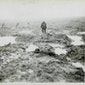 WO I: Revolutie en desillusie, het oorlogsjaar 1917