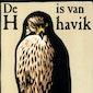 Leeskring. De H van Havik door Helen MacDonald.