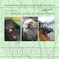 Opendeurdag VOC Neteland