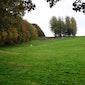 Het Eikenbos in Bertem
