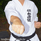 Initiatie Karate