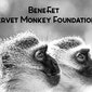 Benefiet Vervet Monkey Foundation