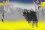 James Welling .Metamorphosis