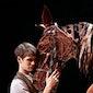 Theatre: NT Live: War Horse