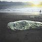 Rondleiding in tentoonstelling Luc Peire en Maryam Najd