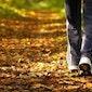 Herfst Ontspanningswandeling