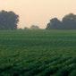 Eerlijke en rechtvaardige land- en tuinbouw
