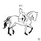 dressuurwedstrijd para-equestrian