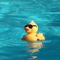 Wervikse Zwemweek