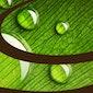 Agressiemanagement  Agressie te lijf - agressie en angst managen, kracht genereren
