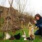Joeri Cortens: Toen de dieren nog spraken ...