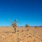 Mythes over het klimaatdebat