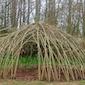 Workshop: Aan het werk met 'levend snoeihout'