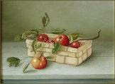 expositie olieverfschilderijen Anna de Lange