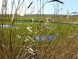 De polder historisch bekeken