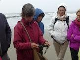 Klimaatwandeling - Strand - Gadeynehelling/zeedijk Blankenberge