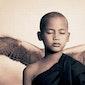 Stilte dansdag: Silent Wings, stilte ademt en beweegt.