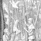 Natuurwandeling 'Volksverhalenwandeling'  GEANNULEERD