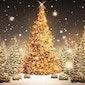 10 en 11 december Kerstmarkt Gildenhuis Wichelen