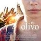 Film El Olivo