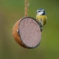 Vette Vogelworkshop - Het Grote Vogelweekend