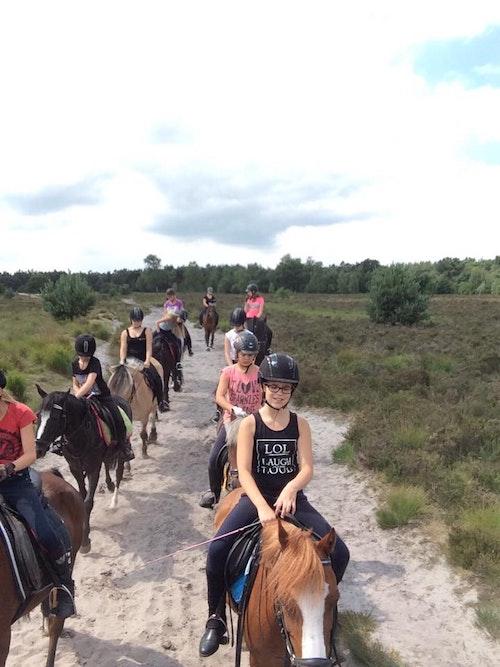 Activak jeugdkampen - Paardrijden manege Speycker Zomervakantie 2017