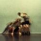 L'HOMMMM Fünf leichte tanzspiele