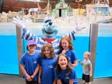 Activak jeugdkampen - Junior dolfijnenkamp Zomer 2017