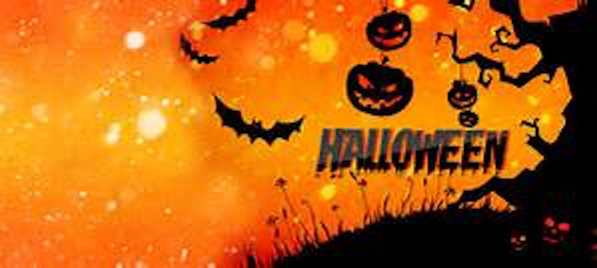 Halloween Thema.Bloemschikken Op Thema Halloween Hoegaarden Uit In