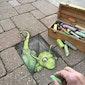 LABO 6-9 jarigen: Krijt-Graffiti