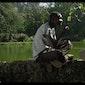 Afrika Filmfestival: Watatu