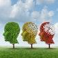 Geheugenklachten en dementie