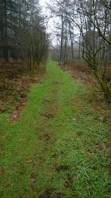 6de Trail Provinciaal Domein Het Leen
