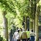 Gezondheidswandeling Klein-Brabant Vaartland