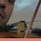 ZOMERWEEK - Arabische liederen voor zangers en muzikanten