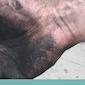 ZOMERWEEK: Tekenen met inkt, houtskool en krijt: figuren en schaduwen - Volzet