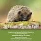 Infosessie: 2017 jaar van de egel