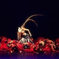 26eme Festival International de Folklore: China