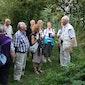 Avondlijke natuurwandeling in de Vondelbeekvallei in Wontergem.