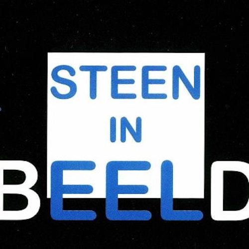 Steen in Beeld