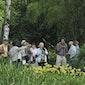 Seizoenswandeling zomer in Arboretum Kalmthout