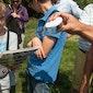 De Reukens: Vlinderwandeling in het domeinbos van ANB