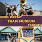 Nihil Obstat | Klezmer in the tram